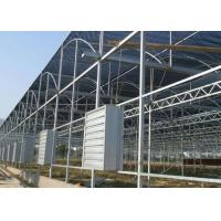 Best Hot Dip Galvanized Steel Greenhouse Venlo Type For Farming Planting wholesale