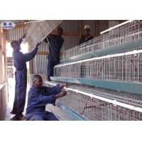 China Custom Poultry Chicken Cages / Indoor Chicken Cage Angle Iron Steel Frame on sale