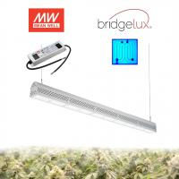 Best Maximum Yield 300W Greenhouse LED Grow Lights Trusses Installation wholesale
