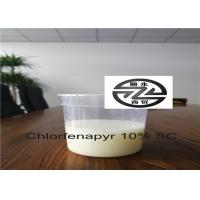 Best 6-8 PH Phantom Liquid Insecticide CAS 122453-73-0 Limited Systemic Activity wholesale