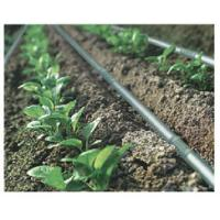 Cheap Drip Irrigation for sale