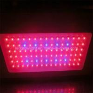 High Power 90W LED Grow Light (WL-BF090A8101)