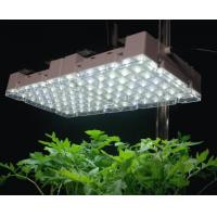 China 14W indoor led grow lights panel AC90 - 240V on sale