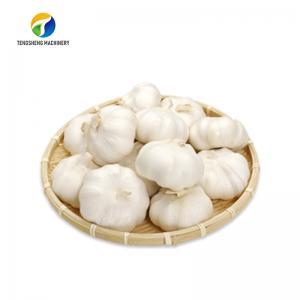 Best Skin Peeling Air Compressor Garlic Processing Machine Garlic Root Shallots wholesale