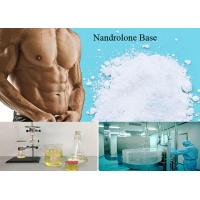 Best 99% Anabolic Steroid Hormones Nandrolone Base For Muscle Building / Fat Loss Nandrol Base wholesale