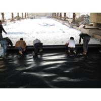 China 0.20-3.0mm HDPE geomembrane supplier on sale