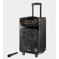 Best Portable Microphone Rechargeable Trolley Speaker For Outdoor Party And Dancing wholesale