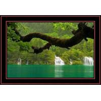 China PET printing 3d lenticular postcards on sale