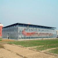 Best Agricultural Polycarbonate Greenhouse Agricultural Glass Greenhouse wholesale