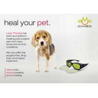 China Dimed Laser Treatment For Veterinary Pain Management , 810 / 910 / 980nm on sale