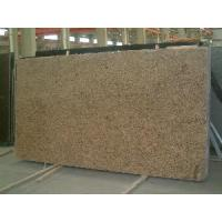 China Giallo Veneziano Granite Slab/ Granite Tile/ Countertop/ Vanity Top on sale