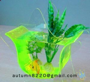 small acrylic fish tank