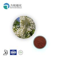 Best 95% Herbal Rutin Powder Sophora Japonica Extract Rutin NF11 For Medical wholesale