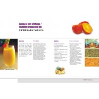 Best Pineapple Juice Production Pineapple Processing Line For Pineapple Fruit Juice wholesale