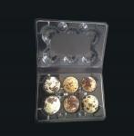 Best Disposable plastic quail egg tray 6 holes quail egg tray plastic egg tray for quail eggs 6 slots wholesale