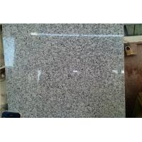 Cheap Natural G640 bianco sardo Granite Stone Slabs grey rustenburg Indoor Outdoor Project for sale