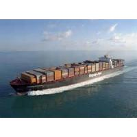 Best International Ocean Freight Services Fast To Montevideo From Shenzhen / Shanghai wholesale