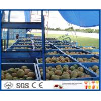 Best Fresh Pineapple / Mango Juice Processing Plant With Can Packaging Machine wholesale