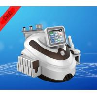 Best Criolipolisis Cryolipolysis wholesale