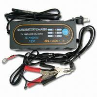 Best 1.6A to 12V DC Charger with 100/230V AC Input Voltage and 4A Output Current wholesale