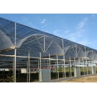 Best Thermal Insulation Single Span Tunnel Plastic Film Greenhouse wholesale