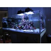 China Lightweight Plexiglass Acrylic Aquarium Fish Tanks / Marine Aquarium Tanks on sale