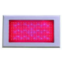 Best 300W Built-in Cooling System Different Ratio Of Red / Blue High Power LED Grow Lights wholesale