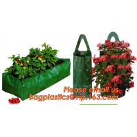 Best OEM Planter Biodegradable Garden Bags , Hanging Growing Strawberry Bags wholesale