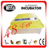 China Fully automatic 48 Eggs Chicken Egg Incubator/Egg Incubator/Mini Egg Incubator VA-48 for sale on sale