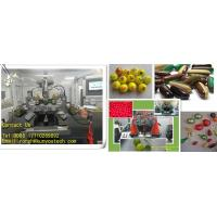 Best Precisional Electric Pharmaceutical Machine For Food / Softgel Capsule Making Machine wholesale