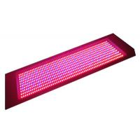 Best 600W CE & RoHS approved 8 : 1 / 7 : 1: 1 Color Ratio Hydroponic LED Grow Lights  wholesale