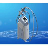Best Lipofreezing Fat Body shape Beauty Machine wholesale