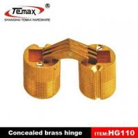 Best Brass concealed hinge wholesale