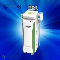 Best Fat dissolving cryolipolysis machine / vacuum slimming beauty machine with Bottom Price wholesale