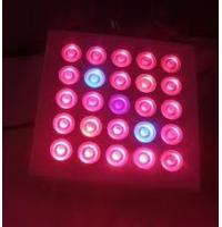 China 2012 big discount! Cheap14W AC85 - 264V led grow light panels, red / blue on sale