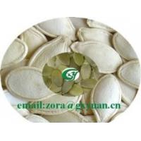 China shine skin pumpkin seeds on sale