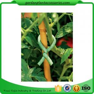 Best Adjustable Soft Foam Garden Plant Ties , Sturdy Plastic Garden Ties Size m L:9.9 Color green 36.5*15.5*19 wholesale