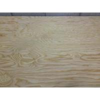 Best Spruce Plywood wholesale
