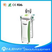 Cryolipolysis Weight Loss Cryotherapy / Slimming Beauty machine