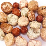 Best Coconut Flavor Handpicked King Cracker Coated Peanut Snack No Pigment wholesale