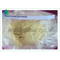 Best Trenbolone Enanthate Powder CAS 10161-33-8 wholesale