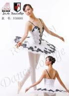 Buy cheap Dancing By The Lake Ballet Tutu product