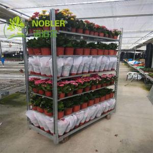China 1900mm Powder Coated Steel Danish Cart Flower CC Racks on sale