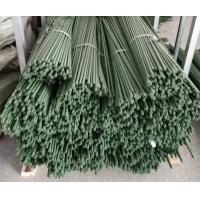 Best Durable Plant Garden Support Green PE Coated Garden Stake wholesale