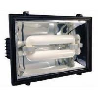 Best Floodlight with Induction Lighting (ADS-513) wholesale