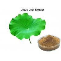 China Losing weight natural botanical extracts, lotus leaf extract powder with Nuciferine powder on sale