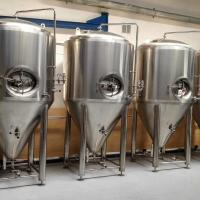 Best 500L double beer fermenter beer fermentation tank use for brewery brewhouse wholesale