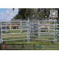 Cheap China 1.6m high Corral Panels (Supplier) | oval pipe Horse Fence Panel for sale