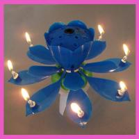 China fireworks flower birthday music candle on sale