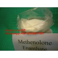 China Primobolan Depot Specific Anabolic Injection Metenolone Enanthate Raws Paypal wholesale